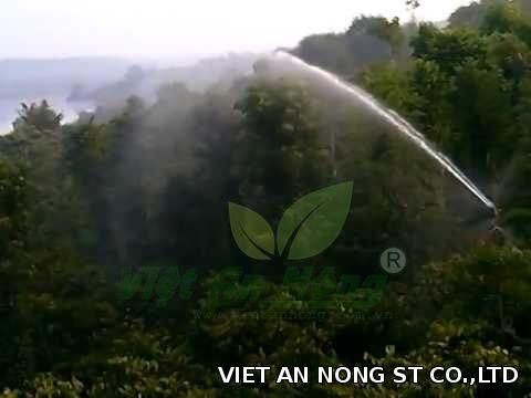 Súng tưới cà phê VAN76_50PY2H