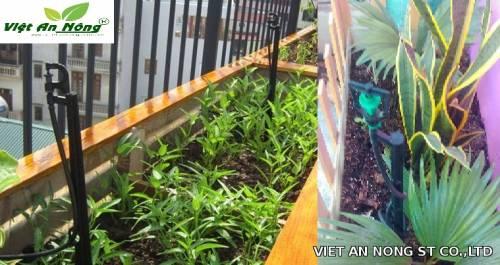 vòi tưới phun mưa cây cảnh sân vườn