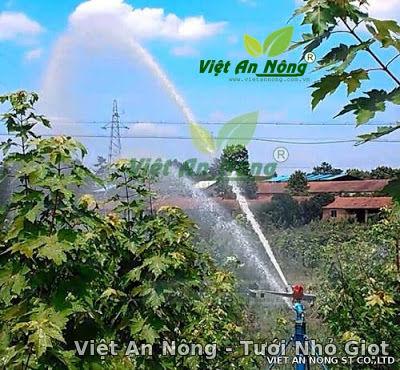Súng tưới cây cà phê VAN60 - 40PY2 2