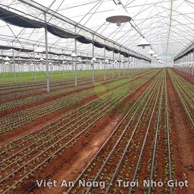 Dây nhỏ giọt dẹp 16mm - Q160220 - Hàn Quốc Việt An Nông 1