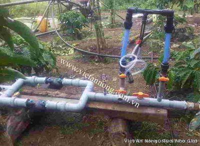 Bộ châm phân venturi AQ 113RS - Ấn Độ