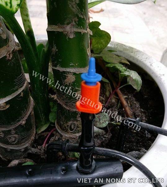 Béc tưới gốc chống côn trùng Việt An Nông