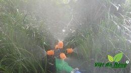 Béc tưới phun sương năm hướng màu cam