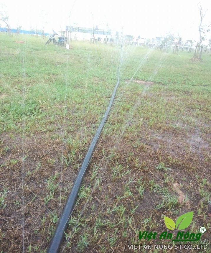 Dây tưới phun mưa phi 34, 5 lỗ phun VAN345H